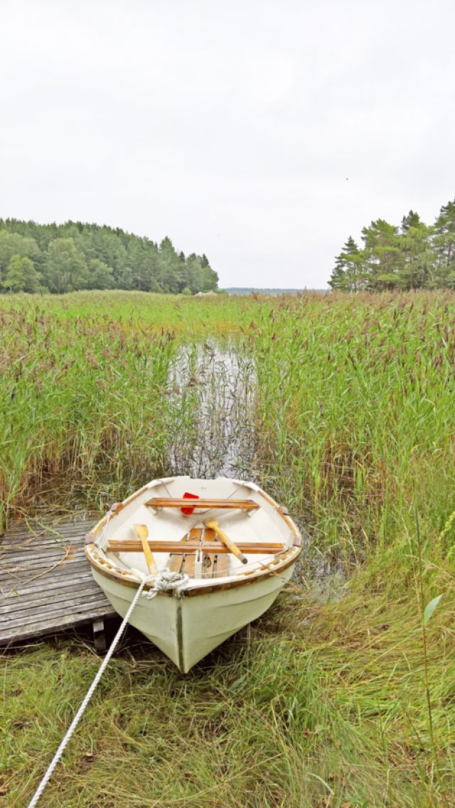 The rowing boat by the northern beach